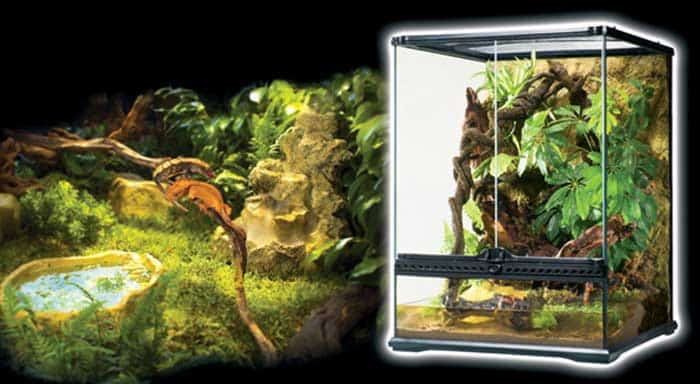 how to make a reptile cage